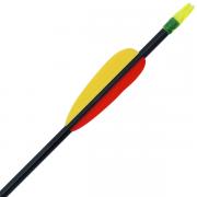 30 Inch Fiberglass Arrows x 3