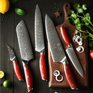 5pc Japanese Damascus Steel Kitchen Knife Set